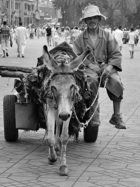 marrakech_2010_MAR_6567