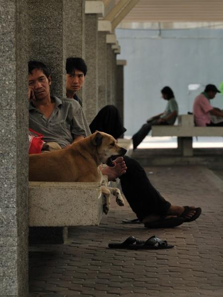 bangkok_2010_BAN_5578