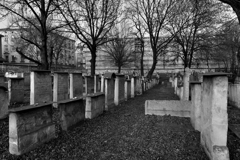 Cracovia_2008_KRA2272